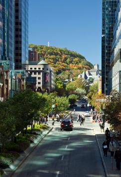 Ville de montr al arrondissement de ville marie cadre de r vision - Office du tourisme de montreal ...