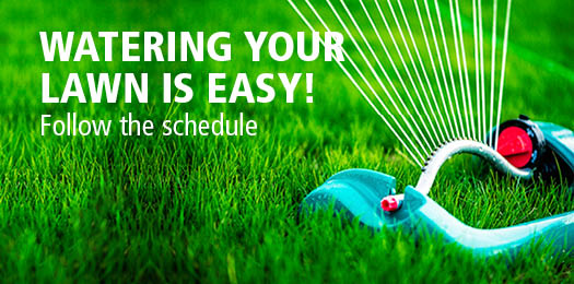 Watering your lawn is easy! Follow the schedule