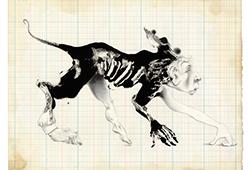 Monsieur de Bionval | 2013-2014 | Graphite, huile, gouache et vernis sur papier Stonehenge | 28 x 38 cm