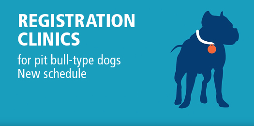 Registration clinics - for pit bull-type dogs, new schedule