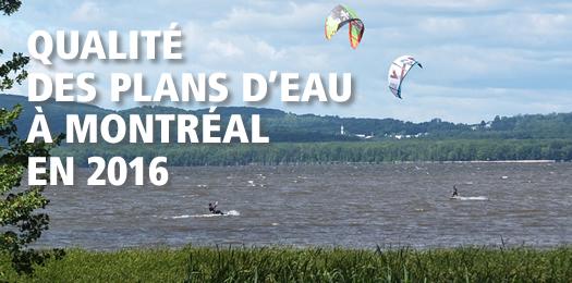 Qualité des plan d'eau à Montréal en 2016
