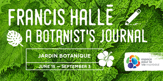 Space for life - Francis Hallé, a botanist's journal - until September 3