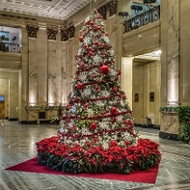December 22 - Celebrate the Spirit of Christmas at the City Hall