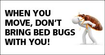 Punaises de lit - EN