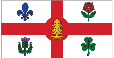 The  city flag