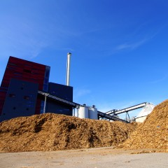 How to boost biomass sectors to create renewable energy ?