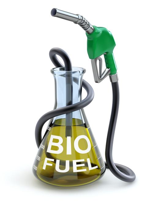 Next-generation biofuels emerging in Montréal | Innovation