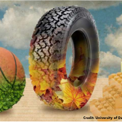 Researchers invent process to make sustainable rubber and plastics