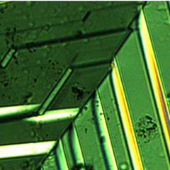 Breakthrough in thin electrifically conducting sheets paves way for smaller electronic devices