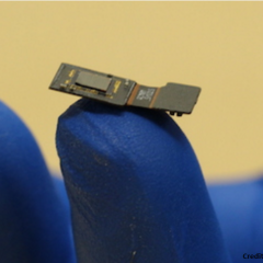 This chip beams images onto the brain to help the blind see again