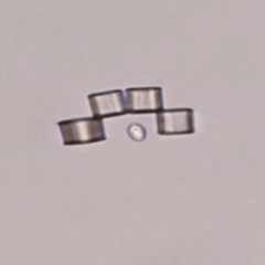 "These tiny modular ""microbots"" can change shape to capture single cells"