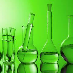Des chercheurs ont développé une super-algue capable de faire face à tous les besoins en énergie