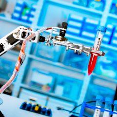 Des robots de gomme qui imitent les muscles