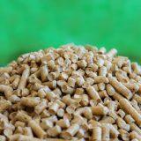 Un additif biosourcé pour remplacer le formaldéhyde des panneaux de bois