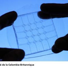 Des chercheurs avancent d'un pas vers des écrans tactiles pliables