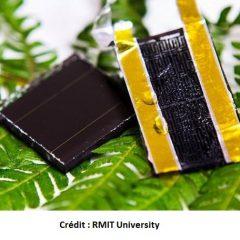 Cette nouvelle électrode à base de graphène pourrait augmenter la capacité de stockage de l'énergie solaire de 3000%