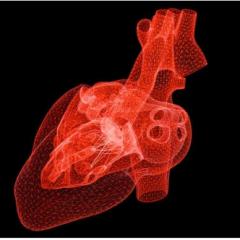 Biométrie : le cœur pour remplacer les mots de passe