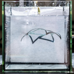 Une nouvelle méthode d'impression 3D crée des objets qui changent de forme