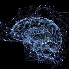 Des chercheurs inventent l'interrupteur à neurones