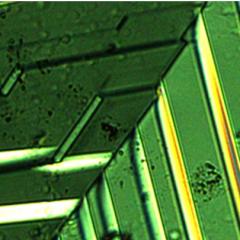 Ces feuilles conductrices ouvrent la voie à la fabrication d'appareils nano-électroniques reconfigurables
