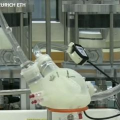 Des chercheurs zurichois fabriquent un cœur artificiel grâce à une imprimante 3D… et il fonctionne