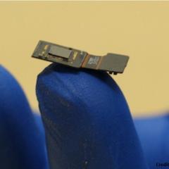 Cet implant pourrait rendre la vue aux aveugles