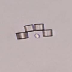 Ces « microbots » modulaires changent de forme pour capturer des cellules individuelles