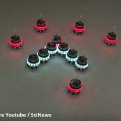 Une dizaine de robots autonomes forment un plus grand robot