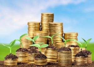 Coins in soil with young plants on blurred background