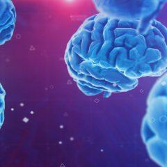 Sciences in vivo et intelligence artificielle s'allient pour améliorer le traitement et la gestion du cancer