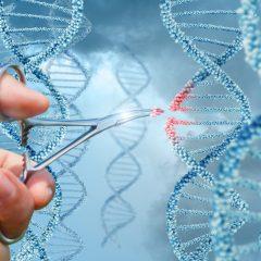 Caprion Biosciences élargit ses activités dans le domaine de la surveillance immunitaire et des biomarqueurs en procédant à l'acquisition de la société américaine Primity Bio