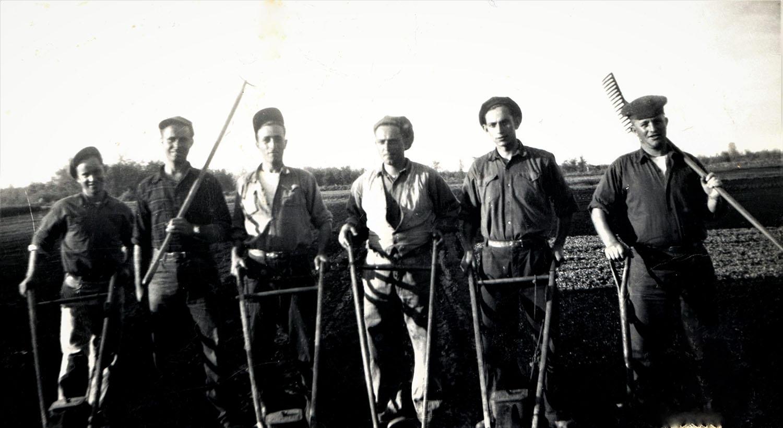 Six hommes travaillant aux champs avec leurs outils de travail.