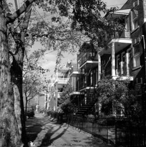 Photo en noir et blanc montrant les façades de triplex, le trottoir et des arbres d'une rue du quartier La Petite-Patrie.