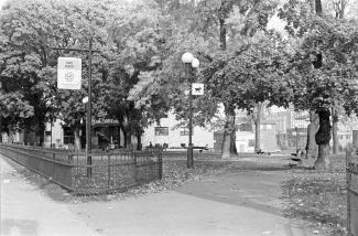 Photo en noir et blanc d'un parc urbain avec plusieurs arbres matures et des édifices en arrière-plan.