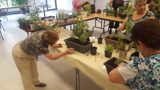 Dans une grande salle, des bacs et des pots de plantes et de fines herbes sont répartis sur des tables. Quelques femmes sont debout autour des tables.