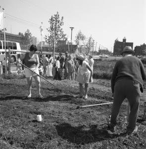 Deux femmes et un homme raclent une parcelle d'un jardin. Un groupe de visiteurs est à l'arrière-plan.