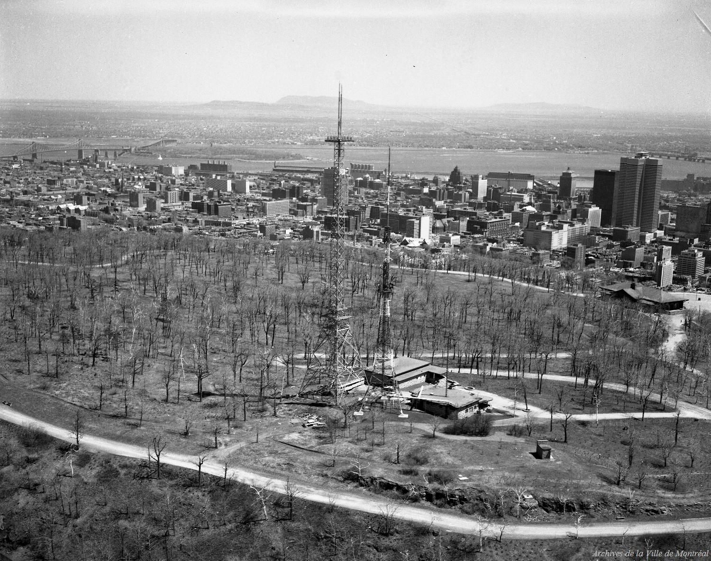 Photographie aérienne en noir et blanc montrant le dessus du mont Royal presque entièrement déboisé. La ville est visible au loin.