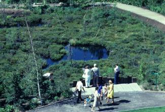 La tourbière des Floralies avec des visiteurs qui observent ou circulent sur le sentier