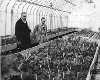 Photographie du frère Marie-Victorin (à gauche) et Henry Teuscher (à droite) dans une serre.