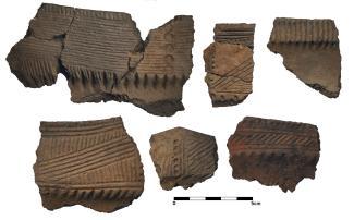 Planche montrant des tessons de poteries variées provenant du site Dawson.