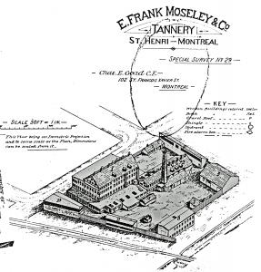 Plan de la tannerie Moseley