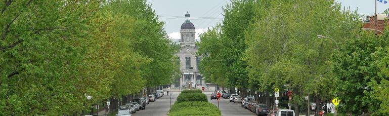 Photo d'une grande rue bordée d'arbres avec une allée centrale verdoyante. En arrière-plan, le marché et le Stade.