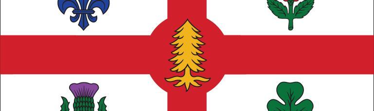 Le drapeau de la Ville de Montréal reprend les principaux symboles héraldiques des armoiries : la croix héraldique de gueules sur fond blanc, les quatre fleurs emblématiques aux quartiers et le pin blanc au centre.