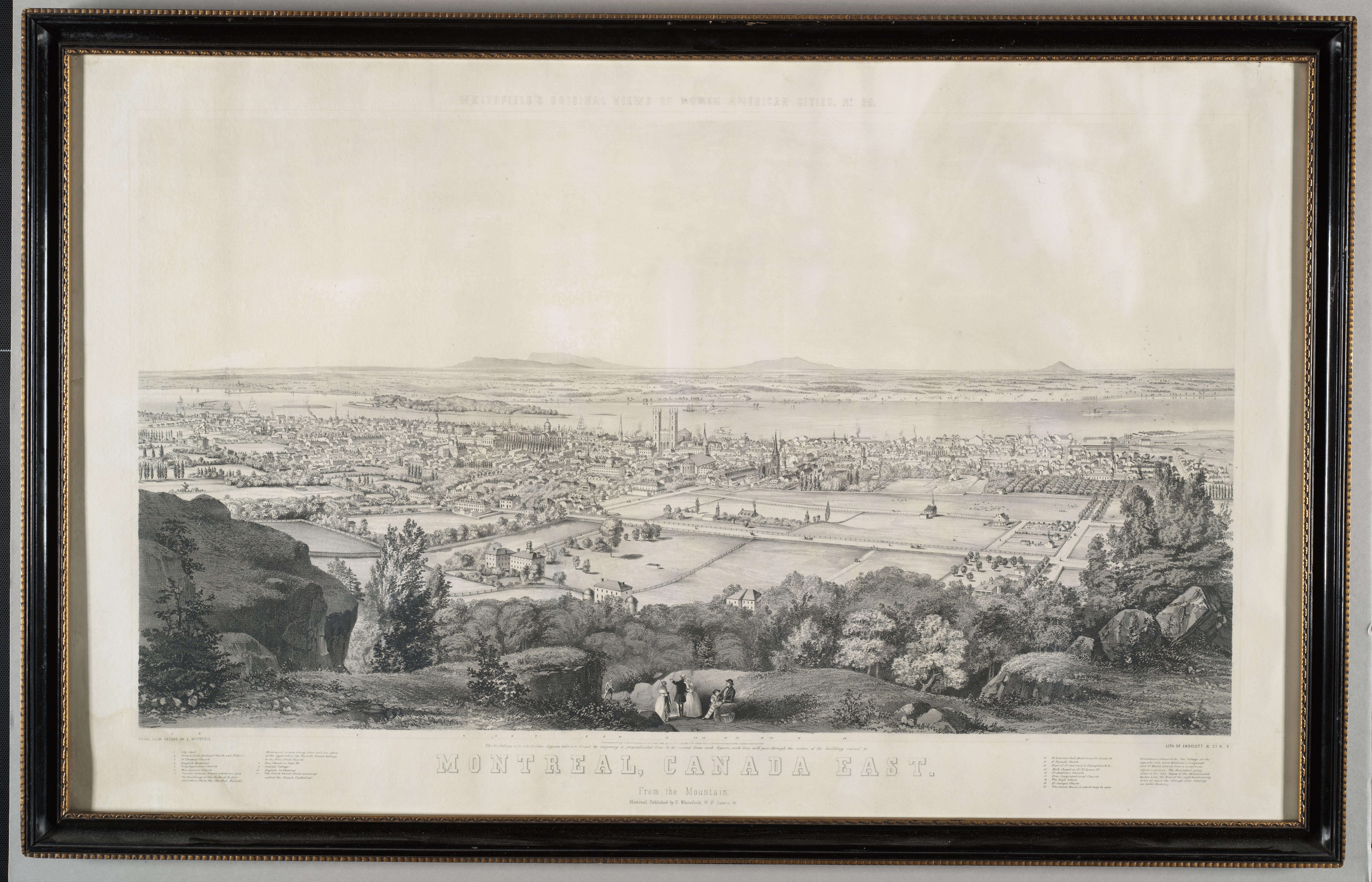 Vue panoramique de Montréal depuis le mont Royal.