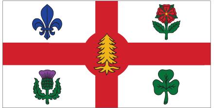 The  city flag