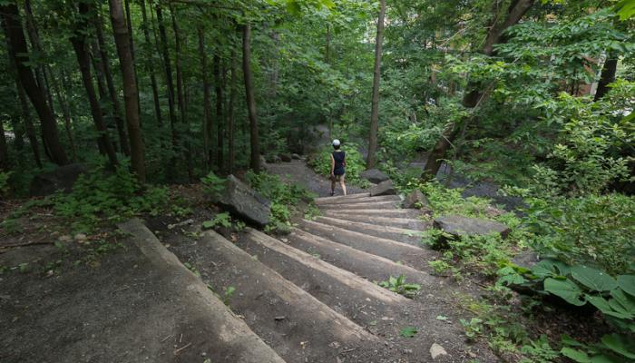 Escalier descendant dans la forêt. Un secteur de vallons boisés, nommé le Piedmont, borde l'escarpement.