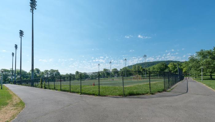 Vue sur le flanc est depuis le parc Jeanne Mance.