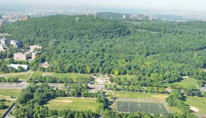 Vue aérienne du flanc est du mont Royal, en été. Cet espace a une délimitation claire, renforcée par la régularité de l'organisation spatiale, la présence des alignements simples ou doubles d'arbres matures et les alignements continus des résidences.