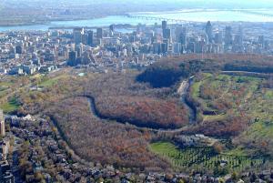 Photographie aérienne du mont Royal.