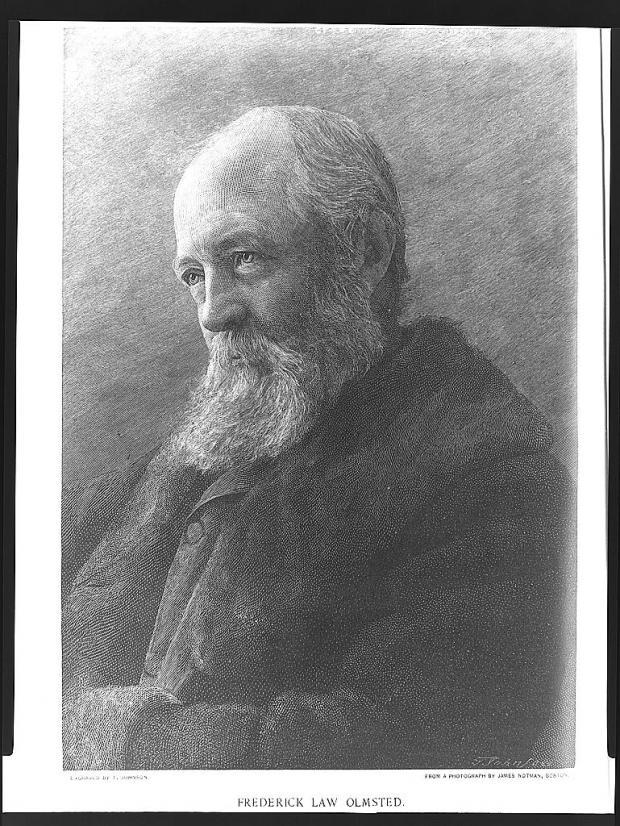 Portrait en buste de Frederick Law Olmsted, posant de trois quarts.